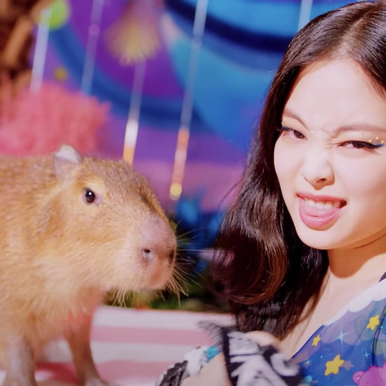 "What's the Animal in Blackpink's ""Ice Cream"" Video? Capybara"