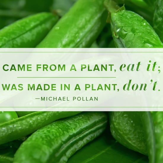 Michael Pollon healthy eating quote