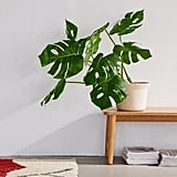 Potted Monstera Faux Plant