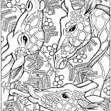 Get the coloring page: Giraffes