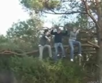3 Dumbasses +  Tree Branch + Saw = Predictable