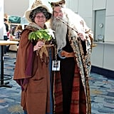 Professor Sprout and Albus Dumbledore