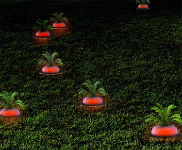 Solar Radish Garden Lights