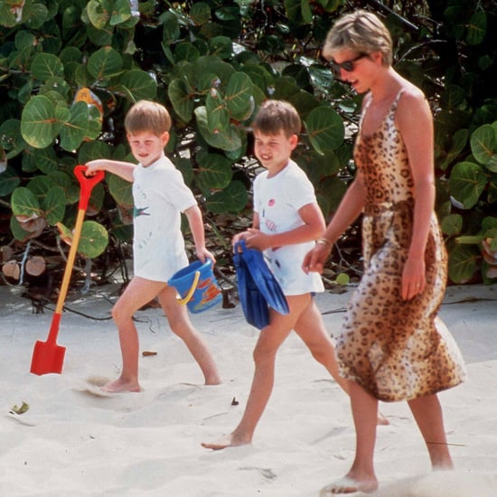 Princess Diana on Holiday With William and Harry Pictures