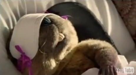 Australian Kotex Ad Starring a Beaver