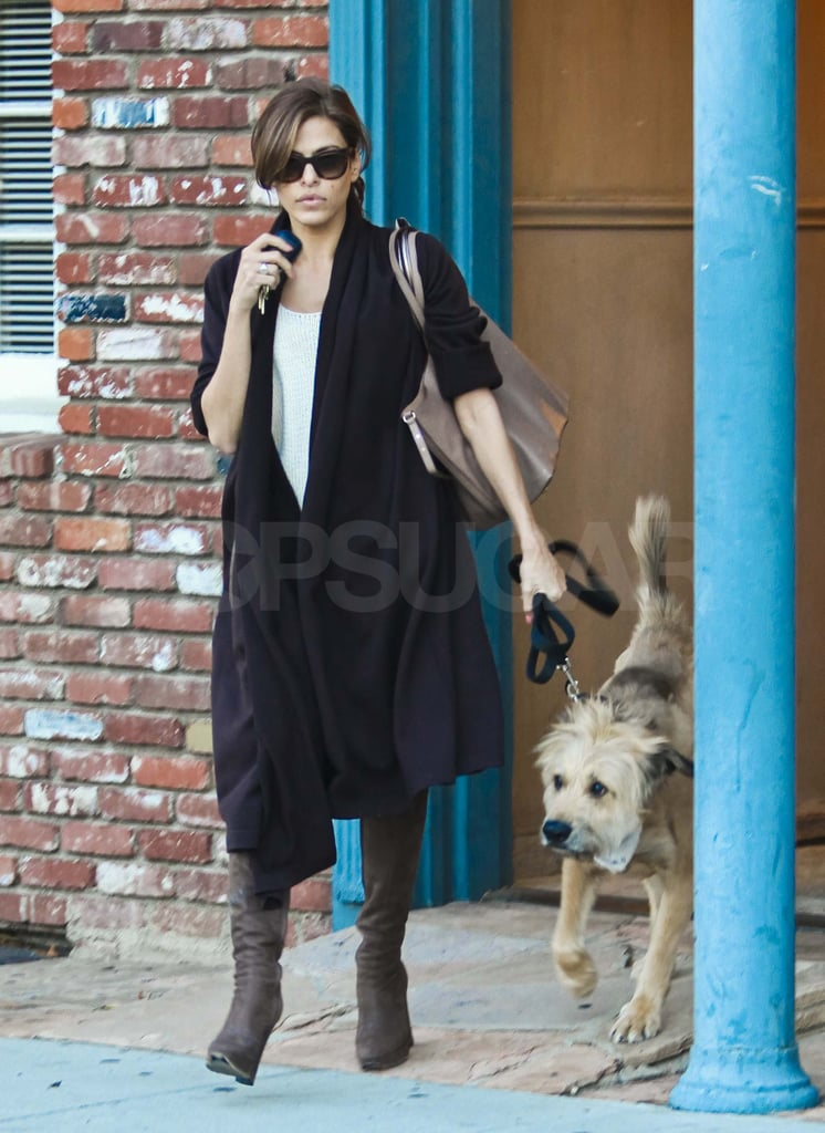 Eva Mendes out in LA with Ryan Gosling's dog.