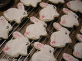 Buttermilk Sugar Cookies - Happy Easter bunnies!
