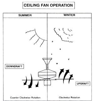 Casa quickie be ceiling fan smart popsugar home mozeypictures Image collections