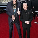 Pictured: Anthony Daniels and Peter Mayhew
