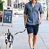 Josh Hartnett took his cute dog for a walk in NYC on Tuesday.
