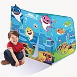 Baby Shark Hide N Play Structure