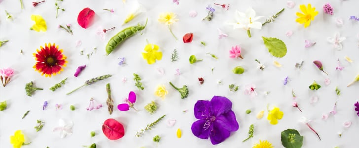 Free and Fabulous Desktop Wallpapers For Spring