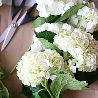 How to make fake flowers and plants look real popsugar home interesting facts about hydrangea mightylinksfo