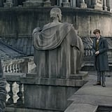 See Newt, Tina, Hot Dumbledore, and More in These New Fantastic Beasts 2 Photos