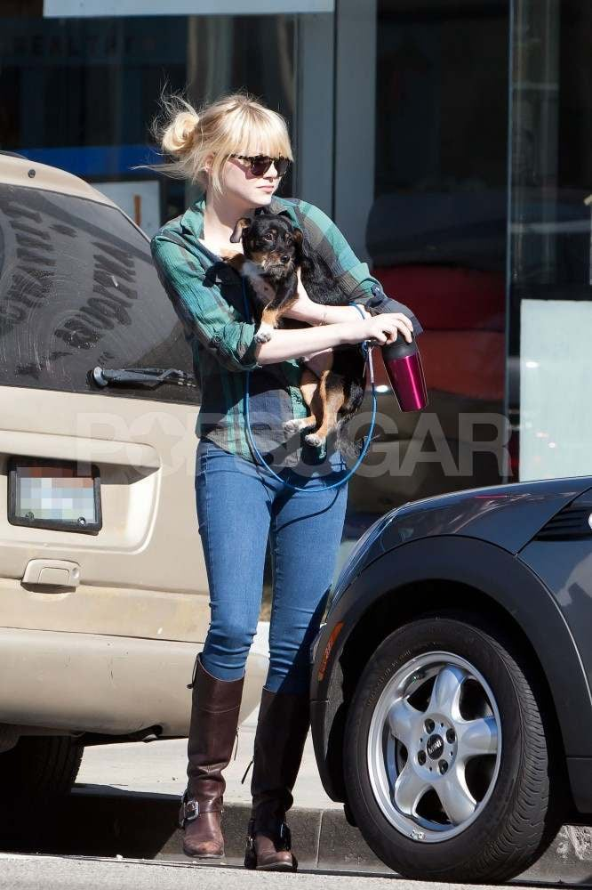 Emma Stone dropped her dog off at Spot! groomer in West Hollywood yesterday. She just arrived back in LA last night after a quick trip out of town. Emma's been quite the frequent flier during award season, but she's managed to avoid showing the effects of jet lag on the red carpet. She wowed in orange at the Golden Globes and glowed at the Critics' Choice Awards with her bright blond hair. The lighter locks are for her Spider-Man role, which she's been filming since the beginning of the year. Her leading man, Andrew Garfield, was on his own for a tight costume and stunt-filled night on set last week.