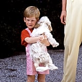 Harry cuddled King Juan Carlos I of Spain's puppy while on a family holiday to Majorca in 1987.