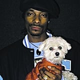 Snoop Dogg doesn't look so tough with a cute, fluffy pup in his arms.