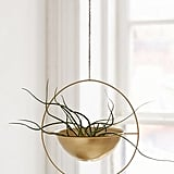 Bowl-Shape Hanging Planter ($39)