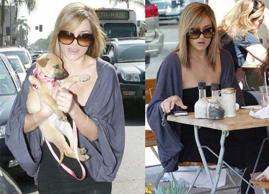 Lauren Conrad Films a Scene from The Hills with her New Puppy