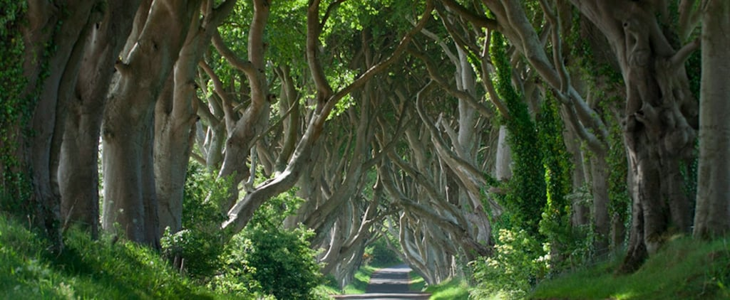 Game of Thrones Tapestry in Ireland