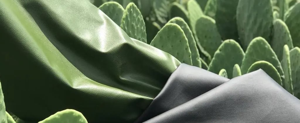 Plant-Based Vegan Leather Alternatives For Clothes