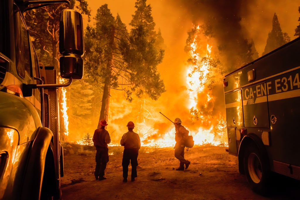5 Ways to Help California Wildfire Victims in 2021