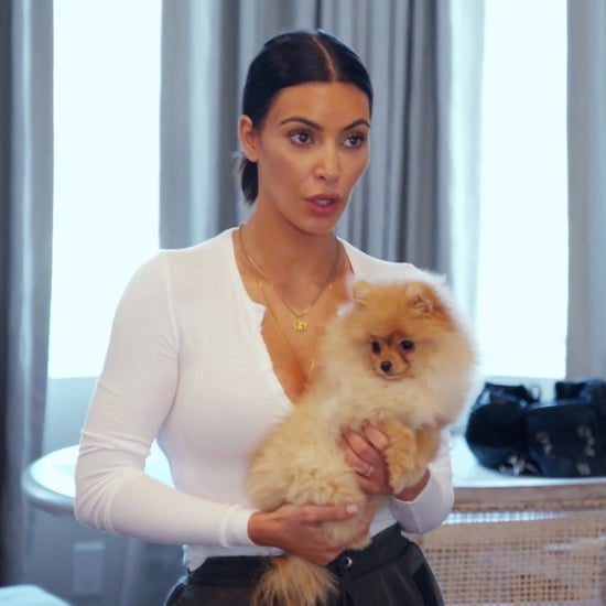 Kim and Kourtney Kardashian Fighting Over Puppies on KUWTK