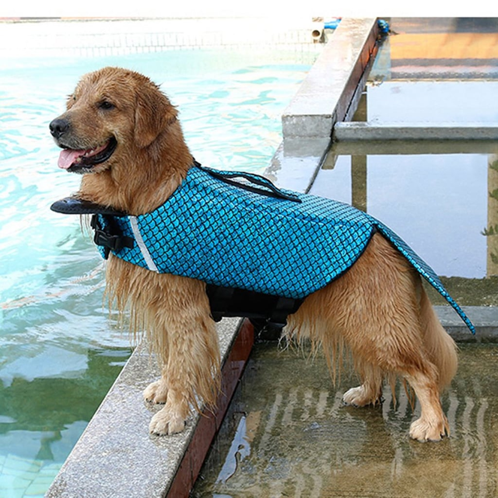 Shop These Mermaid Life Jackets For Dogs