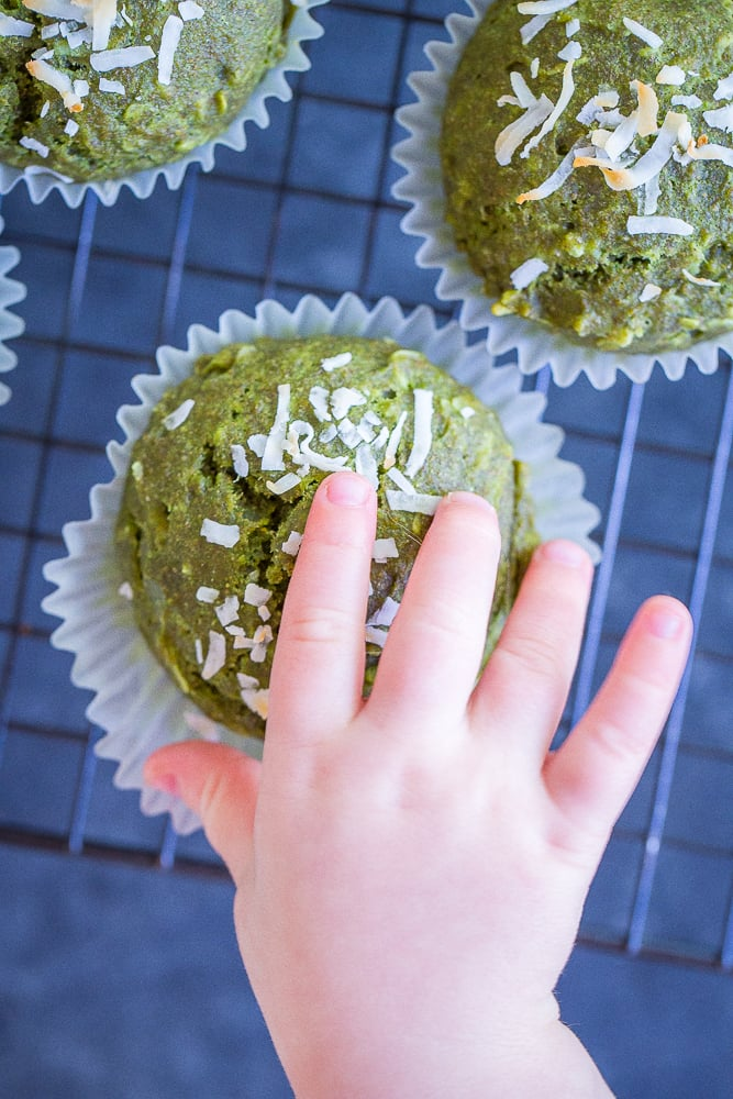 Coconut-Kale Green Muffins
