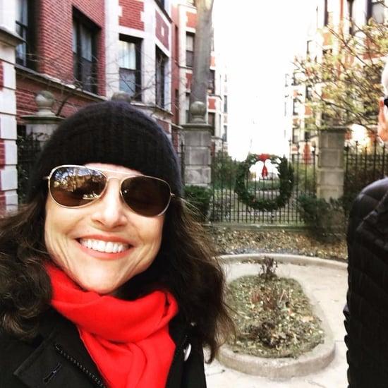 Julia Louis-Dreyfus Visiting Chicago For Thanksgiving 2017