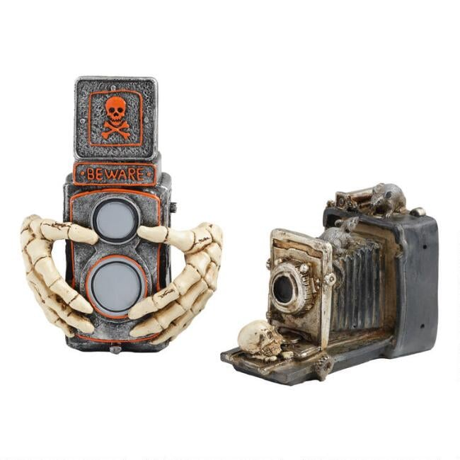 Spooky Camera Decor Set of Two