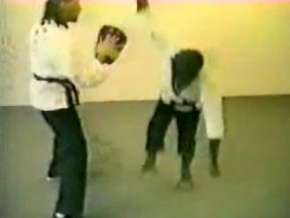 Monkey Does Karate