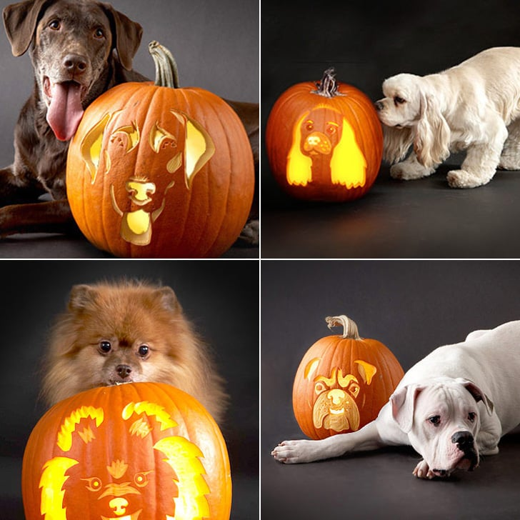 Downloadable dog breed pumpkin stencils popsugar pets