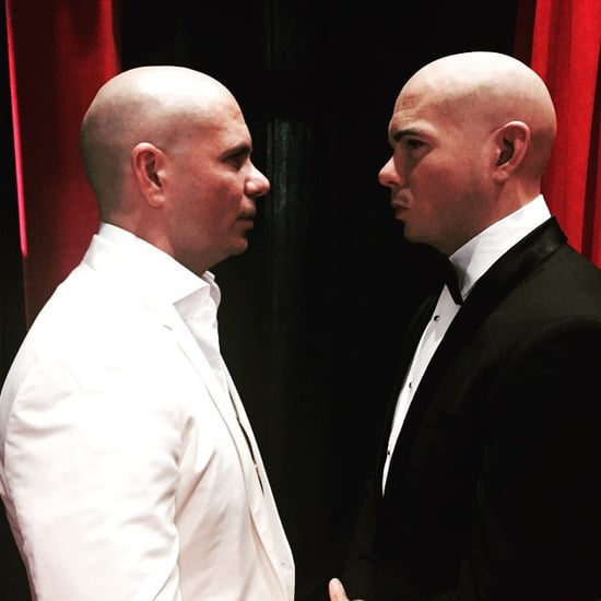 Pitbull Meets His Wax Figure