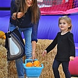 Alessandra Ambrosio and Anja Mazur returned to a LA pumpkin patch.