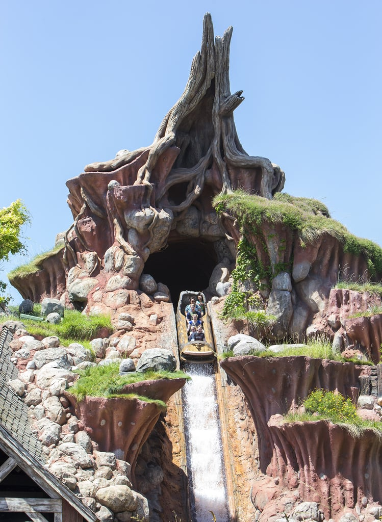 7 Fun Facts About Disney's Splash Mountain That You Probably Didn't Know