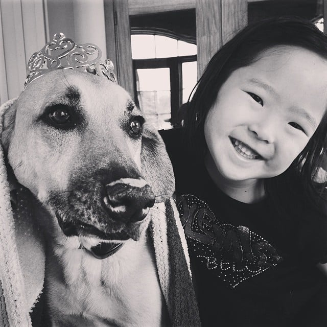 Naleigh Kelley helped get her pooch in the Oscars mood with a sparkly tiara. Source: Instagram user joshbkelley