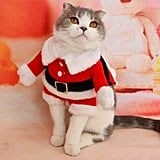 Bolbove Santa Claus Suit Costume For Cats