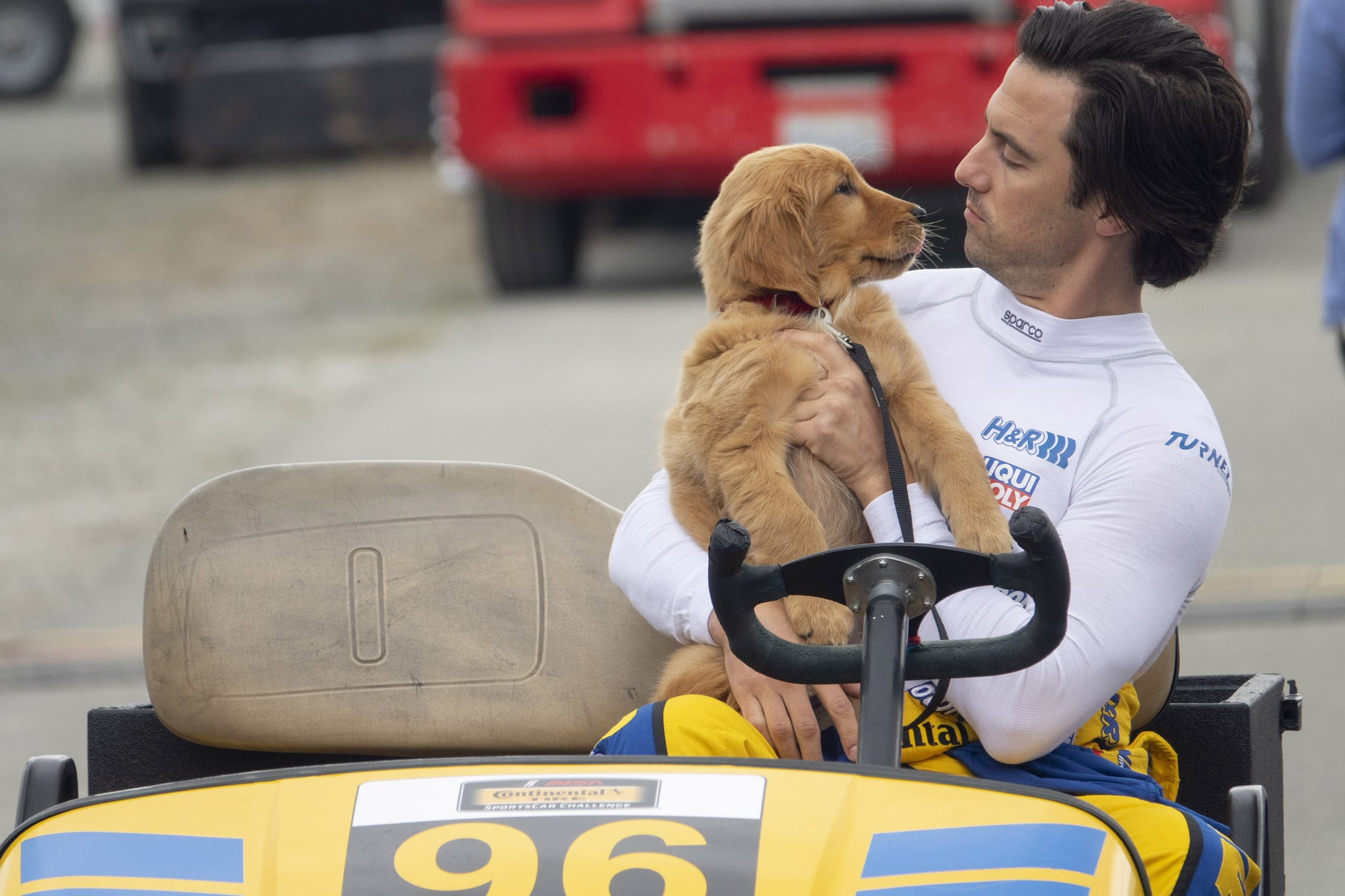 Milo Ventimiglia, Amanda Seyfried, and Adorable Dogs Are Coming to POPSUGAR Play/Ground — Need We Say More?
