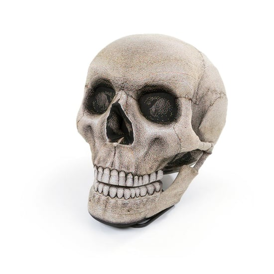 This Halloween Skull Chair Has a Moveable Jaw So You Can Sit
