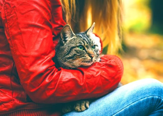 Should Homeless People Have Pets? This Group Says Yes