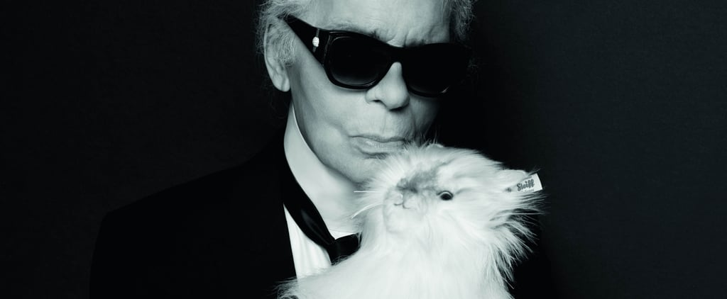 Obsessed With Karl Lagerfeld's Cat? You Can Now Have Your Very Own Choupette