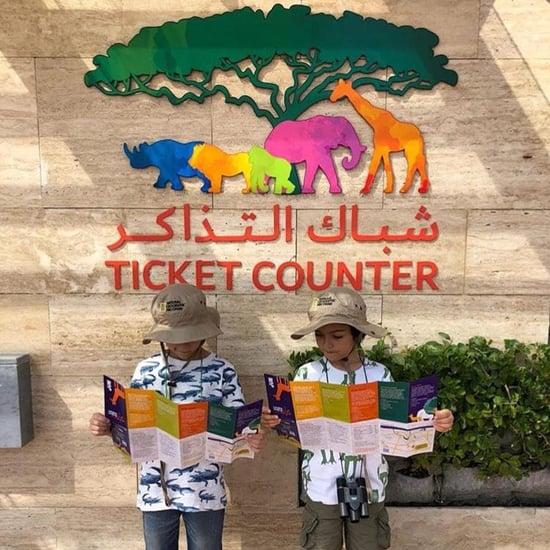 دبي سفاري تفتح أبوابها لاستقبال الزوار من جديد في 5 أكتوبر