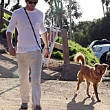 Ryan Walks The Dog