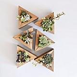 Succulent Triangle Planter Kit