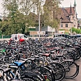 Grab a bike and go sightseeing for free.