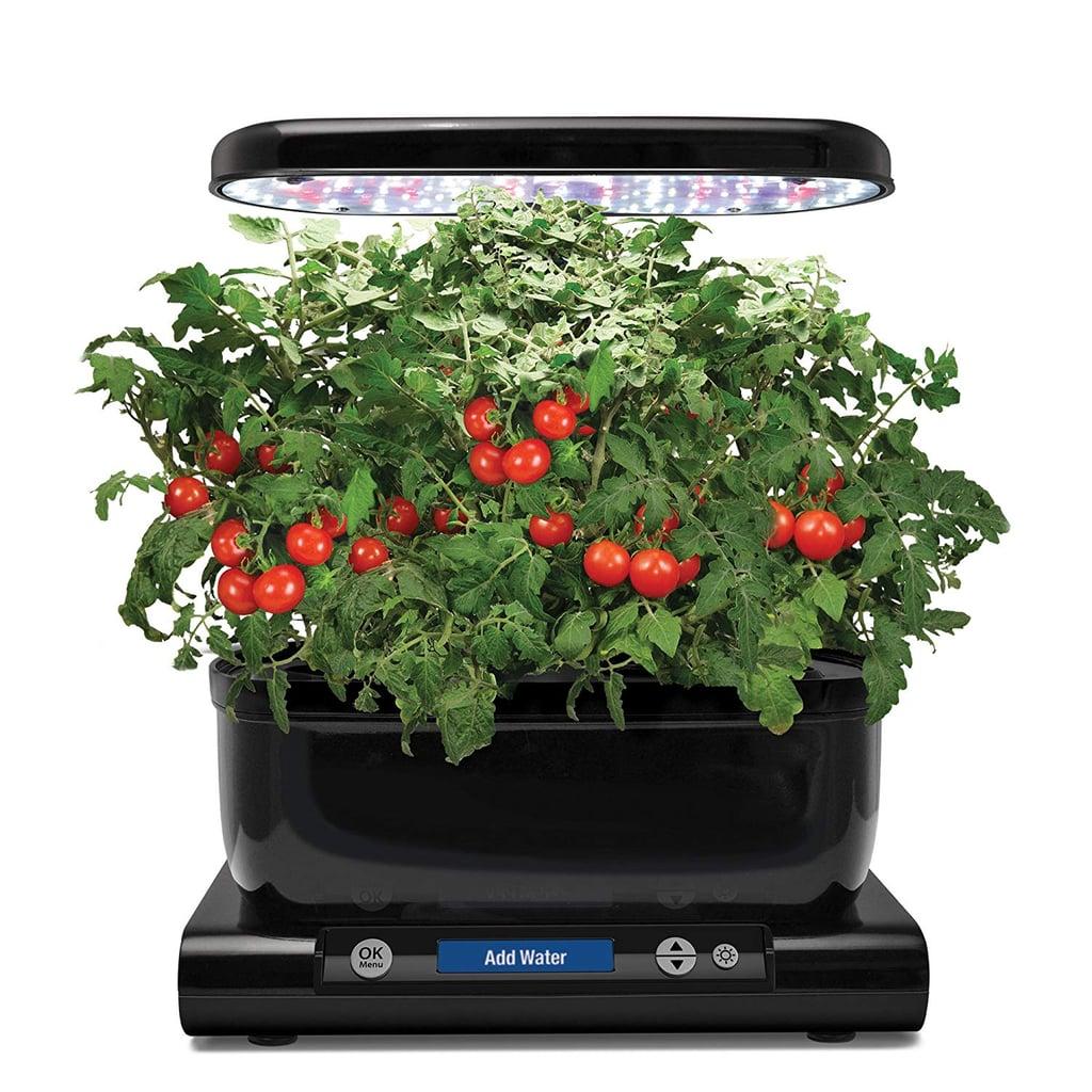 Amazon Prime Day Indoor Harvest Garden on Sale 2019