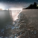 Sea of Stars, Maldives