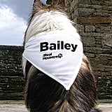 Personalized Pet Bandana