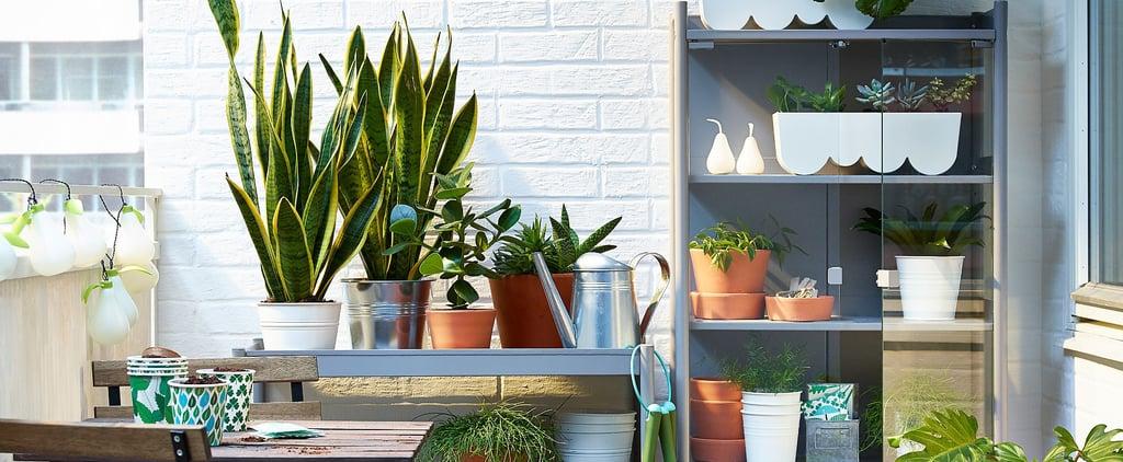 Best Outdoor Organization and Storage Furniture